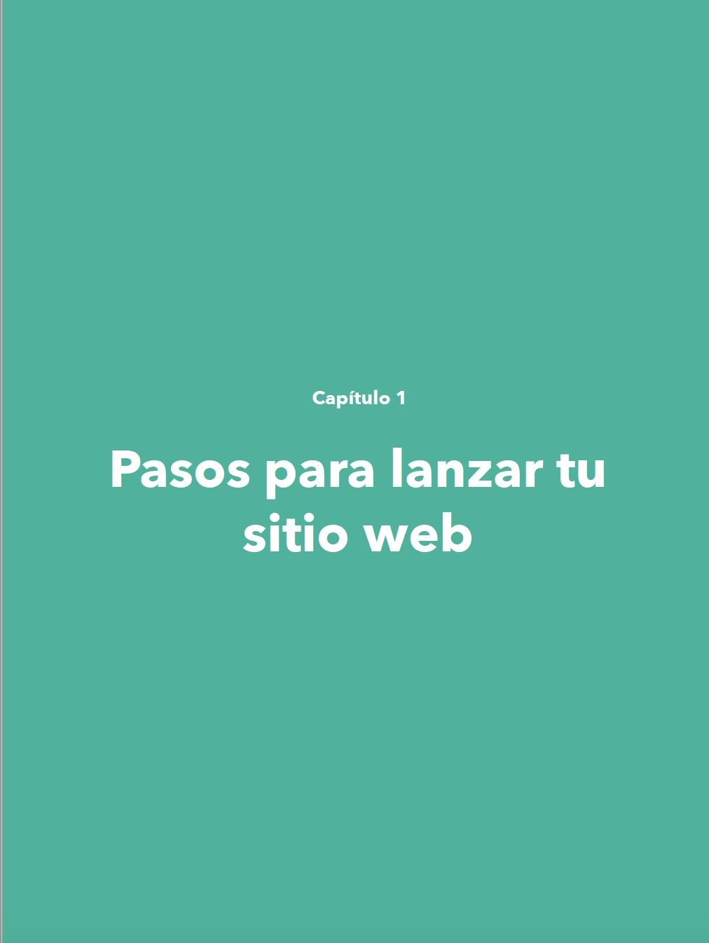 Lanzar tu Sitio Web 4